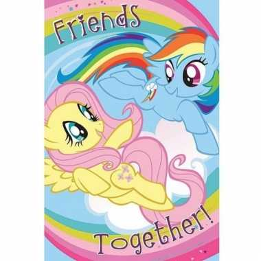 My little pony maxi poster